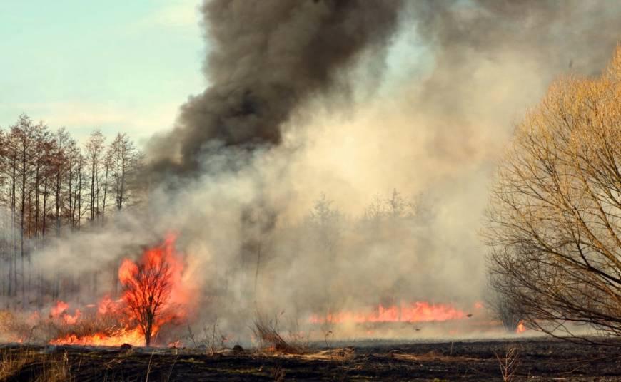 Intervencija 16/2019  Požar otvorenog prostora