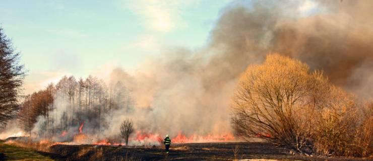 Obavjest o spaljivanju biljnog i drugog otpada